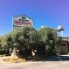 【Olive Pit】アメリカ・北カリフォルニアにある、アクセス抜群のオリーブ店