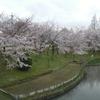 2017年04月07日に桜を撮影するために堺へ…