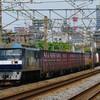 6月1日撮影 東海道線 平塚~大磯間 貨物列車 ①