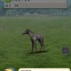 7800万の馬wwww