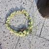 シロツメクサの花かんむり