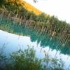 【北海道】【札幌】【小樽】【美瑛】夏の北海道で夜まで楽しもう!