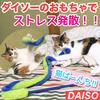 【ダイソーの猫のおもちゃ】でストレス発散!末っ子あんずが暴れまくる!!