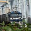 三郷駅で撮る