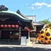 日本家屋のお座敷で「草間彌生」の作品が生き生きと蘇る!