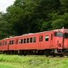 第1379列車 「 タラコキハを構図を変えて狙う 2020・夏 津山線紀行その4 」