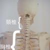 適度な運動も必要ですがやり方次第で骨が歪む。