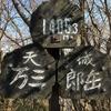 【23/日本百名山】2017年3月19日 天城山~私も超えたい天城越え~