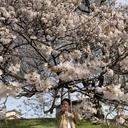 スプーン王子のブログ