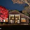 「江戸東京たてもの園」の紅葉ライトアップ