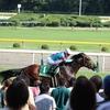 新潟競馬 旅打ち2018 5 新馬戦と新潟記念