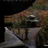 京都紅葉狩りの旅 4