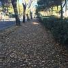 リド島散策続きと、ヴェネツィアの夕暮れ〈2018年12月11日ヨーロッパ旅行:24〉