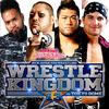 もうヤングバックスは結構です@Wrestle Kingdom 13 妄想-7