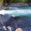 宮崎県椎葉村大河内にてヤマメのルアー釣りレポ