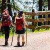 【体験談】散歩はうつの特効薬! ヒトのメンタルは歩くだけで軽くなる。