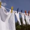夫婦2人ですが、毎日洗濯する理由。