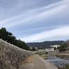 今年は早めに一回目の登頂  六甲山を新ルートで攻める