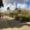 小さくてかわいらしい街!キューバ・トリニダーの魅力を紹介する