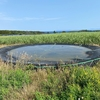 波照間島の小規模3池(沖縄県波照間島)