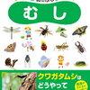 昆虫図鑑にもなる本「4・5・6歳のふしぎクイズむし」