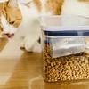 正しいやり方でキャットフードを保存して、愛猫にいつでも新鮮なご飯を。