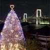クリスマスの想い出☆