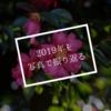 2019年を写真で振り返る(前編)