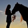【アニマルセラピー】動物との触れ合いによる癒し
