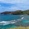 〔ハナウマ湾閉鎖〕日本からハワイに連日2000人超 到着【新型コロナ 14日間強制的に隔離】※ 追記アリ