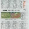 西日本新聞連載第5話 耕作放棄地の魅力