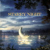 Starry Night - 조미 (ZHOUMI)×려욱 (RYEOWOOK)/歌詞/日本語訳/和訳