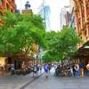 2017 Sydney&Bangkok ***Breeze18
