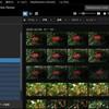 【2021年レビュー】SONY PlayMemories Home(無料の画像管理ソフトウェア)~自然撮影のデータ管理~