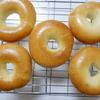 【パン作り】ベーグルは一次発酵あり/なしでどう違う?焼き比べてみました!