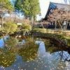 赤崎弁天池(京都府京都)
