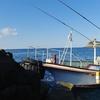 足摺岬の秋磯はまだまだ夏だった件についてwwでも楽しい~~!!動画もあるよ~