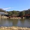 おさんぽ庭園@横浜ベイサイド(上)