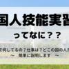 外国人技能実習生ってなに??日本で何してるの?仕事は?どこの国の人たち?~簡単に説明します~