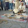モロッコのマラケシュのすみっこで愛を叫んだら命拾いした話