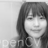 Pythonで初めてのOpenCV【導入〜画像の読み込み・保存・画像への文字書き込み】