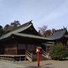 鷲宮神社と河津桜