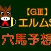 【GⅢ】エルムS 結果 回顧