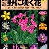 「校庭に咲く花の名前を当てよう」実習〜撮れたてどっとコム+山渓「野に咲く花」
