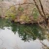 洞川湖(兵庫県神戸)