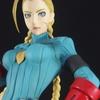 「STREET FIGHTER 美少女 キャミィーZERO COSTUMEー」静かな闘志を見せるゼロキャミィ!!