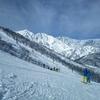 (超)久しぶりのスキー