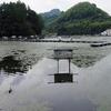 鯨ヶ池(静岡県静岡)