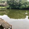 薬師沼(群馬県前橋)
