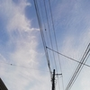 きょうの空とタケノコ料理